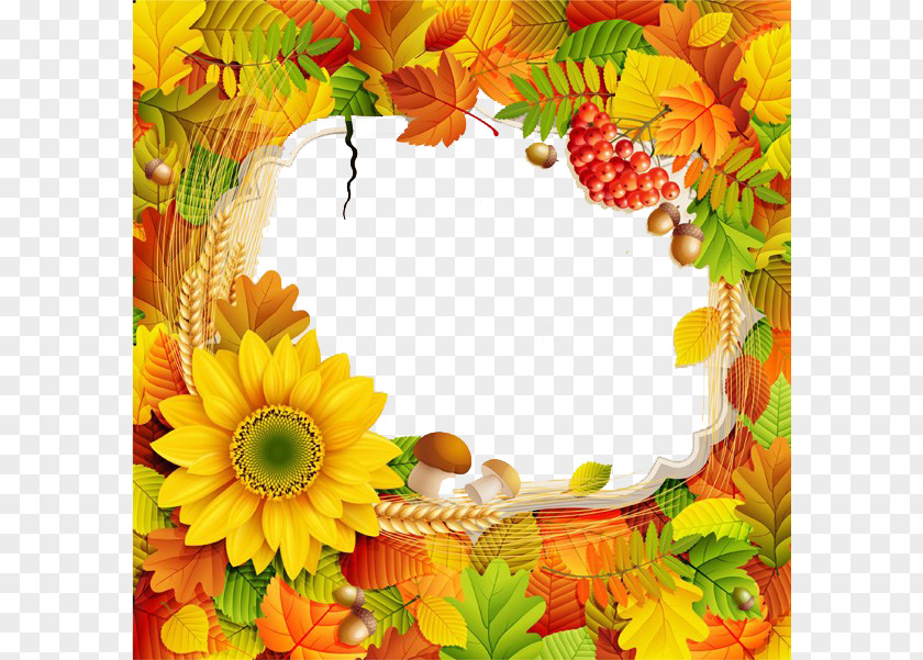 Fall Promotional Posters Border PNG