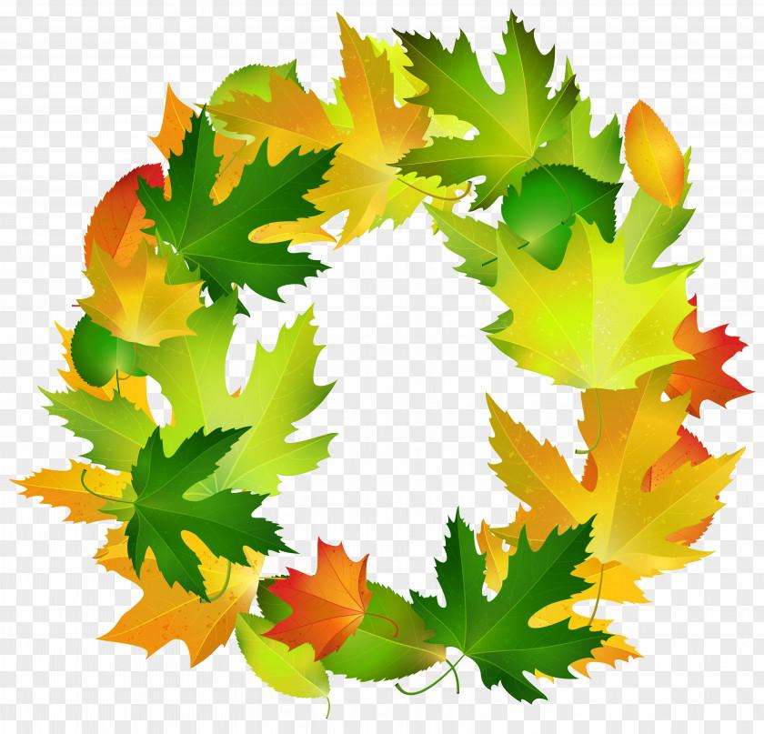 Fall Leaves Oval Border Frame Clipart Image Leaf Clip Art PNG