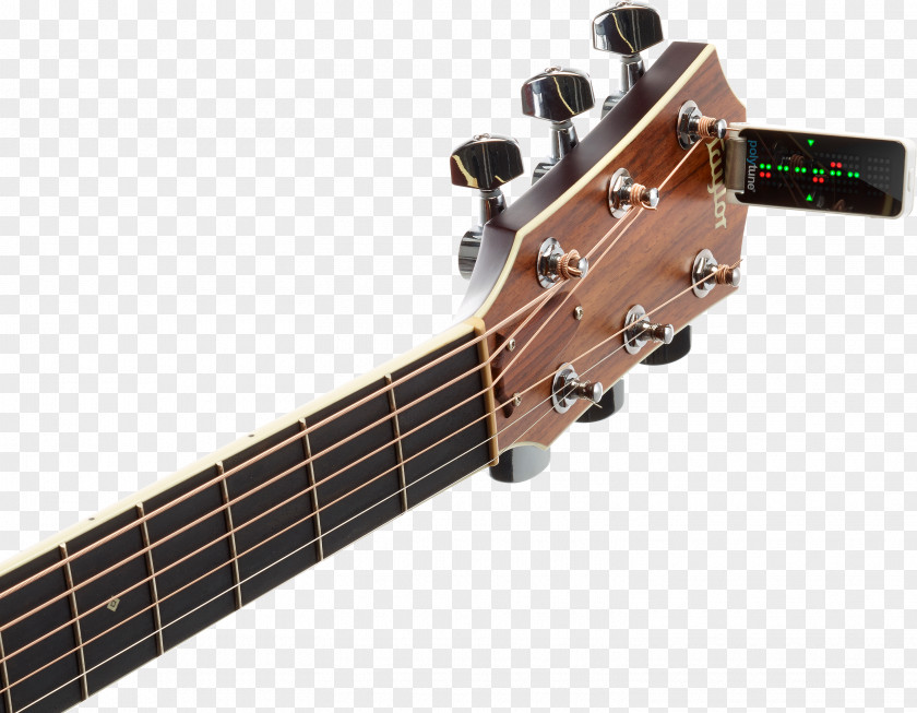 Bass Guitar Electronic Tuner TC Musical Tuning Instruments PNG