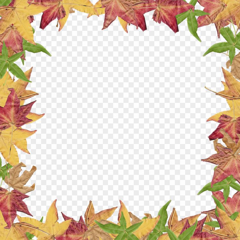 Border Leaves Cliparts Autumn Leaf Color Clip Art PNG